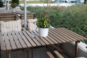 Ogródek sezonowy